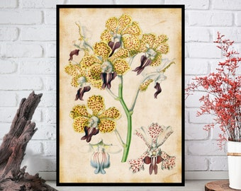 Wall Art, Flowers Wall Decor - Flowers Wall Hanging - Flowers Wall Print - Digital Art - Printable Art - Single Print#032 - INSTANT DOWNLOAD