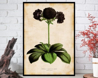 Wall Art, Flowers Wall Decor - Flowers Wall Hanging - Flowers Wall Print - Digital Art - Printable Art - Single Print#024 - INSTANT DOWNLOAD