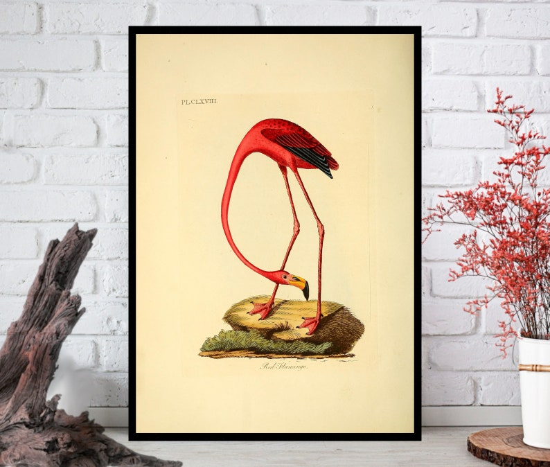 Flamingo Wall ArtFlamingo Wall Decor Flamingo Wall Hanging image 0