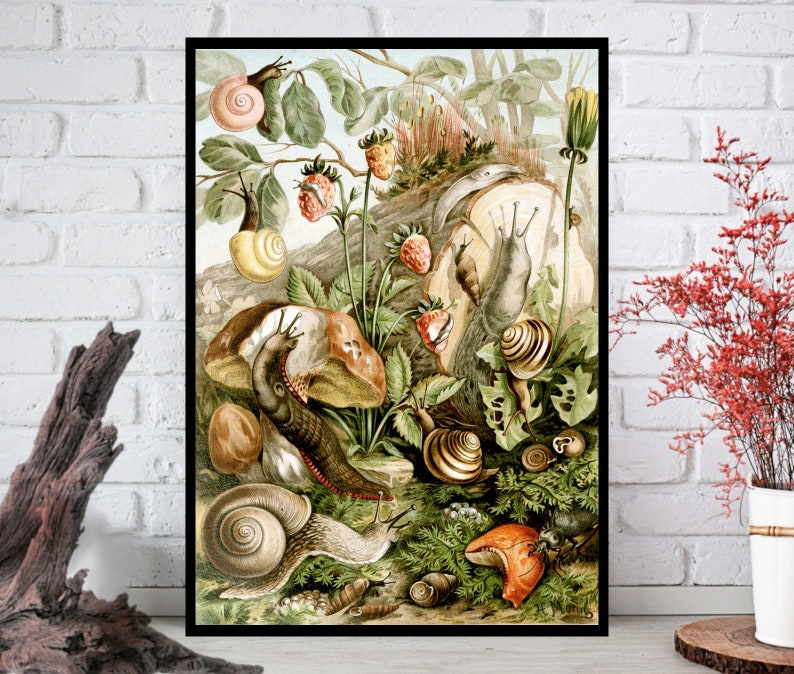 Snails Wall Decor  Snails Wall Hanging  Snails Wall Print  image 0