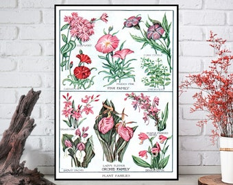 Pink and Orchid Family Flowers Wall Decor - Flowers Wall Hanging - Flowers Wall Print - Digital Art - Printable Art