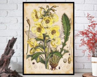 Wall Art, Flowers Wall Decor - Flowers Wall Hanging - Flowers Wall Print - Digital Art - Printable Art - Single Print#018 - INSTANT DOWNLOAD