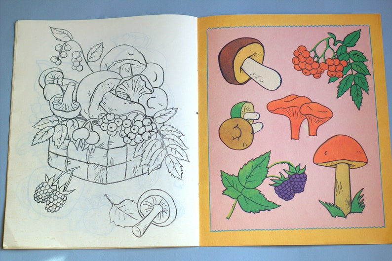 Mushrooms Coloring Book Vegetables Fruit Drawings Kids Book Vintage Nature Color Illustrations Ussr Picture Children S Book Flora Guide