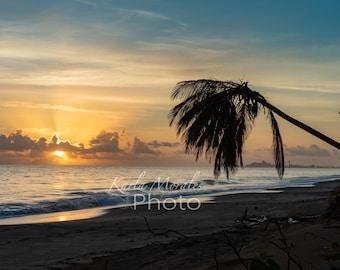 Dorado Puerto Rico Beach Sunrise Downloadable Photo