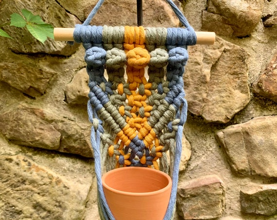 colorful macrame wall plant hangers