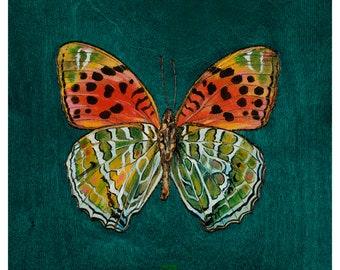 Butterfly Art Print | Himalayan Fritillary Butterfly | Green Orange Butterfly Wall Decor