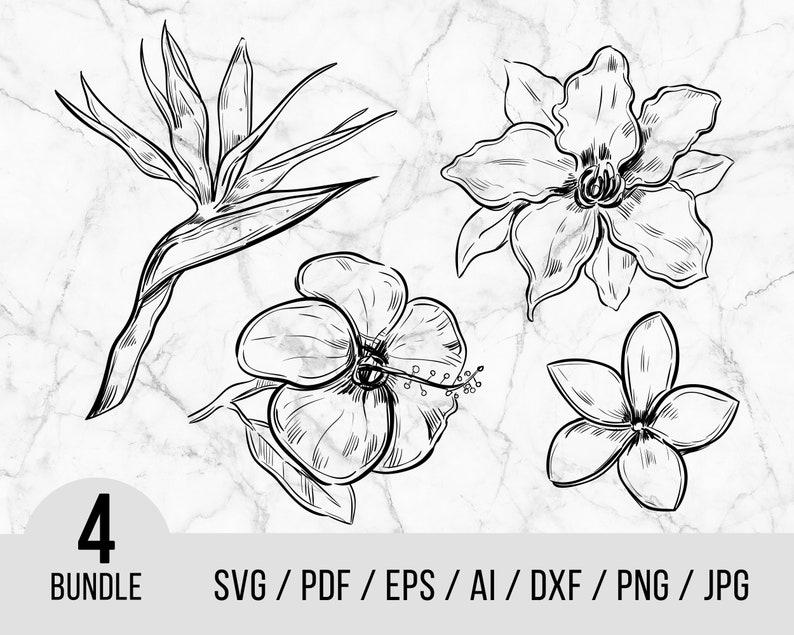 Flowers Svg Floral Svg Digital Files Cute Flowers SVG Floral Art Svg Flowers Bundle zip cut File jpg png dxf JPG AI PD0384