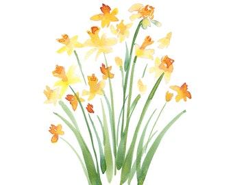 Wild Daffodils – Watercolor Art Print
