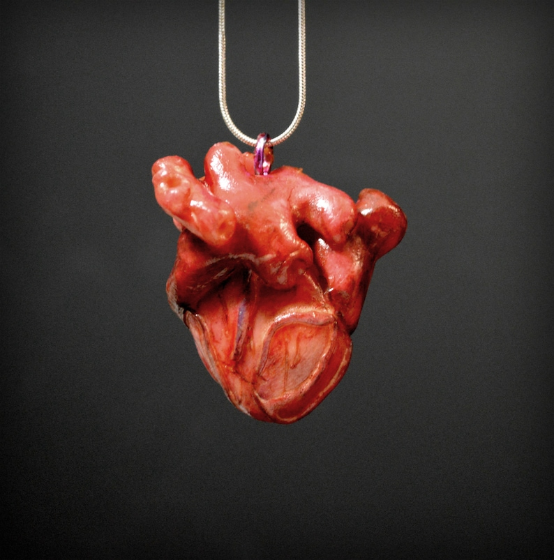 Anatomical Heart Pendant  Heart Necklace  Realistic Heart image 0