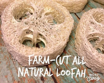 Natural Loofah Sponges