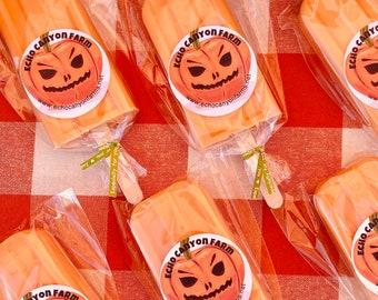 Pumpkin Pops/Pumpkin Popsicle Ice Cream Soap/Party Favors/Kids Soap Favors/Ice Cream Soap/Birthday Party Soap Favors/Summer Party Ideas
