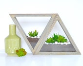 Triangle Wood Wall Planter Geometric Air plant Succulent and herb planter Showcase Terrarium- Wall decor table top - Set of 2