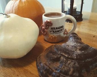 Mushroom Hot Chocolate