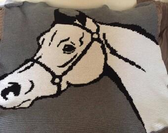crochet picture blanket