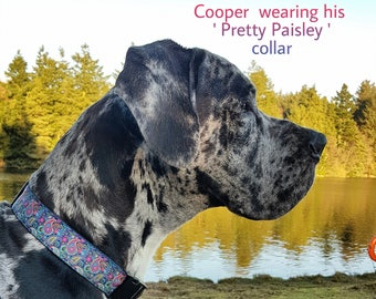 Handmade, Dog collars in gorgeous funky designs, various sizes available
