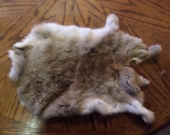 Rabbit Fur Pelt Hide Creme Colored