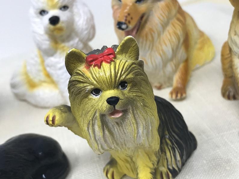 Hund Hat Gummi Gefressen