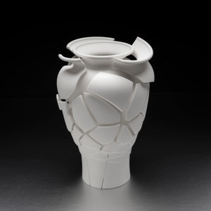 Modern /& Living Room Vase,Stylish Made To Furnish Your Living And Home  V19 Twisted 3D Printed Vase Unique Design 3D Printed Silver