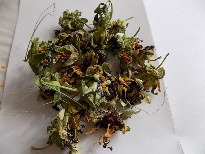 spices herbs FLOWERS of PASSIFLORE products from my garden,PASSIFLORE Bio,Collected and dried in the open air,summer 2018 Dried Flowers PASSIFLORE