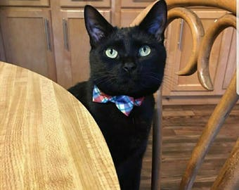 Cat and Dog Bow Ties!