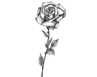 Black rose tattoo etsy delicate bw rose temporary tattoo rose temporary tattoo black rose tattoo realistic rose tattoo black and white rose tattoo floral mightylinksfo