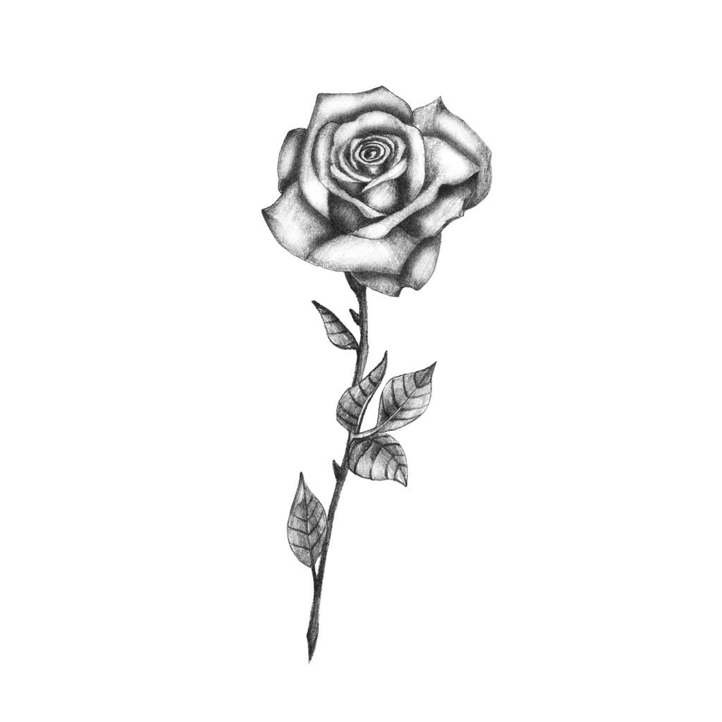 Delicate Bw Rose Temporary Tattoo Rose Temporary Tattoo Etsy