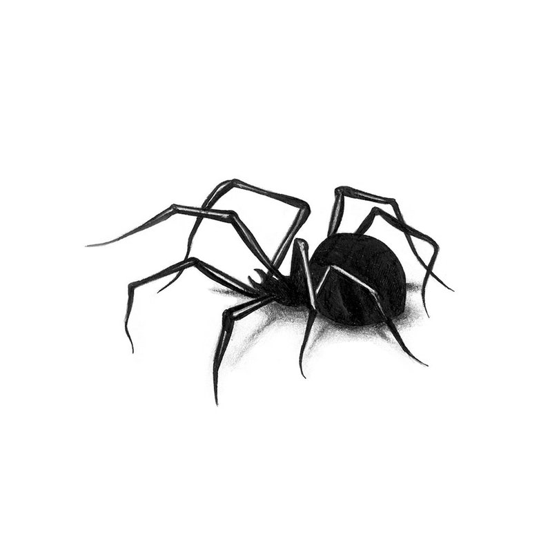 802ea8a00 Blackwork Spider Spider Temporary Tattoo / Spider Blackwork | Etsy