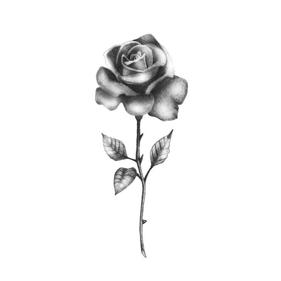 Realistic Black Rose Temporary Tattoo Rose Temporary Etsy