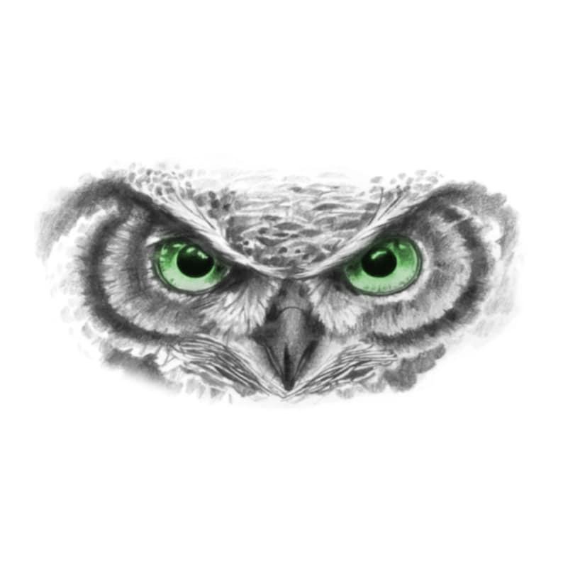 Owl Eyes Owl Eyes Temporary Tattoo Forearm Owl Eyes Tattoo Arm Owl Temporary Tattoo Owl Eyes Realistic Tattoo Large Green Owl Eyes