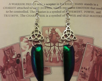 da4961066c1 Silver Plated Beetle Wing Elytra Celtic Knot Earrings Pagan Goth Steampunk  Lolita Victoriana