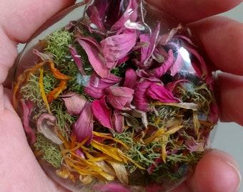 ALNITAK Glass Disc Nature Momento Ornament