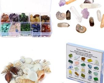 Natural Minerals Sets // Raw Amethyst, Raw Garnet, Green Aventurine,  Crushed Turquoise, Raw Red Jasper, Raw Rose Quartz, Selenite, Apatite
