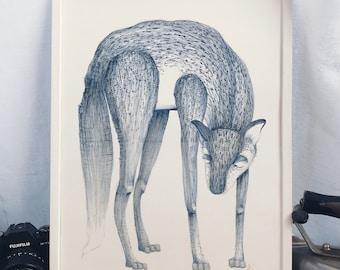 WINTER FOX drawing, A3 ish original