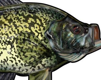 """Black Crappie Fishing Diecut Sticker 6""""x3.25"""" UV Coated inks Fishing Stickers Fly Fishing, Crappie Fishing Decal Window Sticker"""
