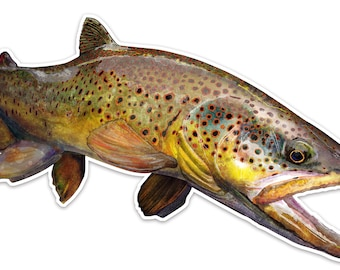 """The Wild Brown Trout Sticker 7.75"""" x 3.4"""" UV Coated Inks Diecut"""