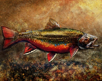The Spawning Male Brook Trout Painting, Artist Prints