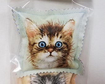 Cat Nip Pillow