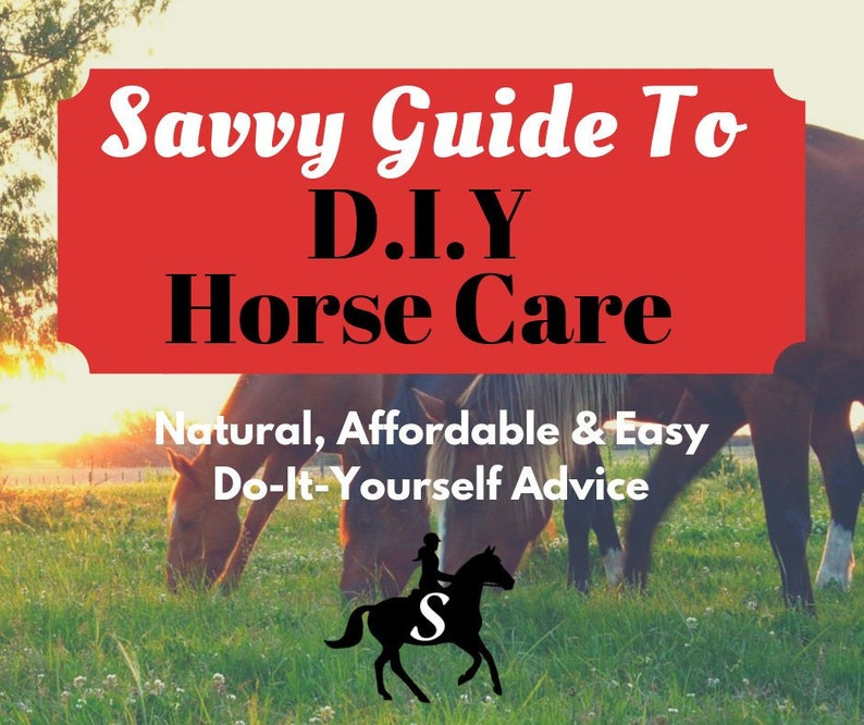 Savvy Guide to DIY Horse Care eBook  Tips and Recipes for image 0