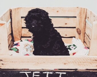 Rustic Vintage Apple Crate with Chalkboard front