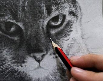 Custom Graphite Pets Portraits