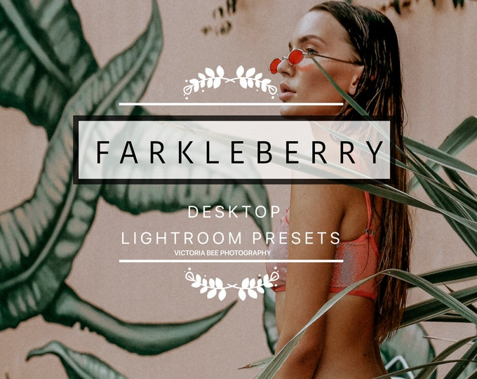 Desktop Lightroom Preset FARKLEBERRY Moody Portrait Lifestyle Lightroom Presets