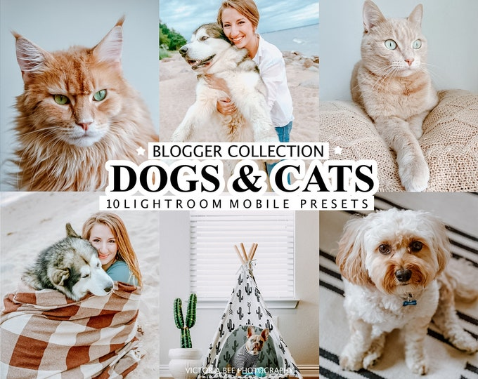 10 Lightroom Presets DOGS AND CATS, Pet presets for Phone, Dog presets, Instagram Filters for pets, Puppy Preset, Kitten Photo Filter