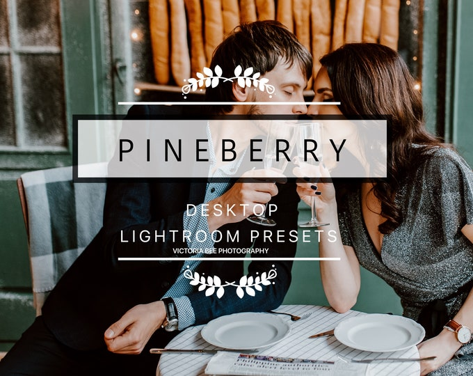 Desktop Lightroom Preset PINEBERRY Tropical Blogger Lightroom Presets Modern Travel Blogger Lightroom Presets For Photographers