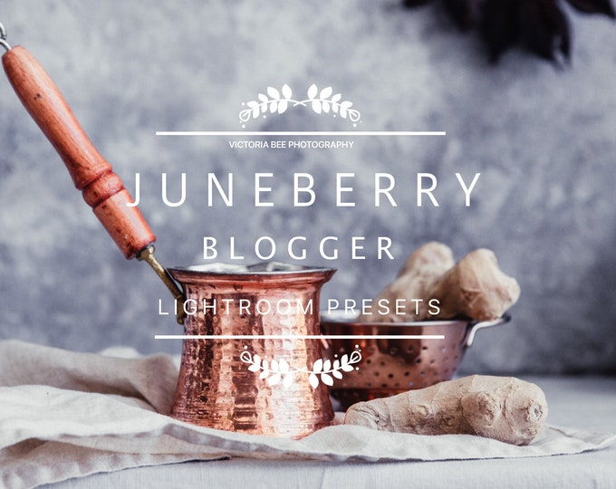 Desktop Lightroom Preset JUNEBERRY Blogger Lightroom Presets Scandinavian Style inspired
