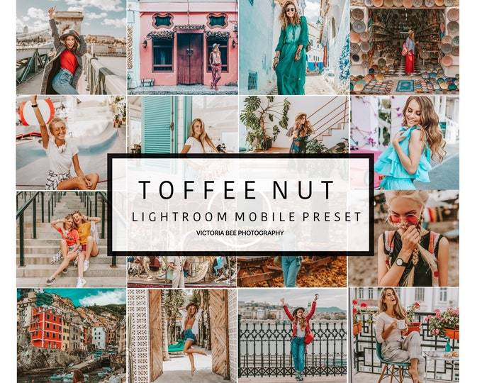 Mobile Lightroom Preset TOFFEE NUT Influencer Lightroom Preset Travel Blogger Instagram Lifestyle Fashion Photography