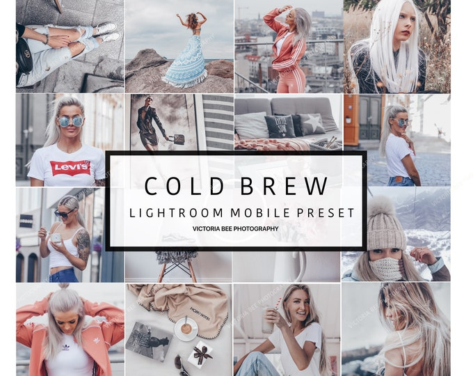 5 Lightroom Mobile Presets COLD BREW Pale Grey Tones Preset for Bloggers Silver Mood Mobile Preset Cool Instagram filter