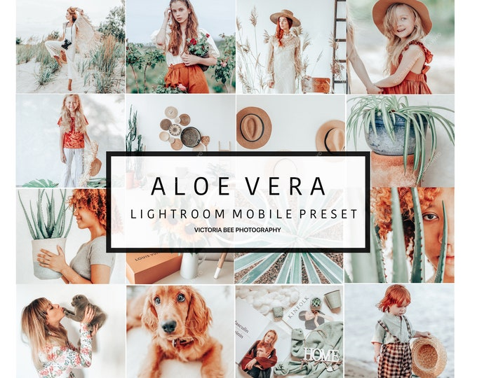 5 Lightroom Mobile Presets ALOE VERA  Bright Airy Mobile Presets Indoor Outdoor Light Presets Pastel Instagram Editing Preset lightroom
