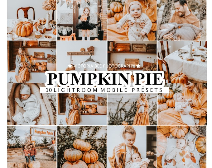 10 Lightroom Presets PUMPKIN PIE, Autumn Mobile Presets, Fall Season Desktop Presets For Instagram, Halloween Presets for Bloggers