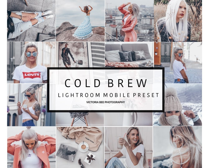 Mobile Lightroom Preset COLD BREW Pale Grey Toned Preset for Bloggers, Silver Mood Mobile Preset
