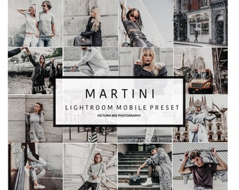 5  Lightroom Mobile Presets MARTINI Urban Street Lightroom Preset  Gray Tones Lifestyle Preset for Photo Editing